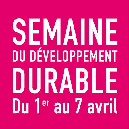 logo-SDD2014_rose